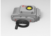 Explosion Proof Type Actuator